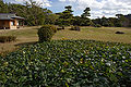 Akashi Castle30n4592.jpg