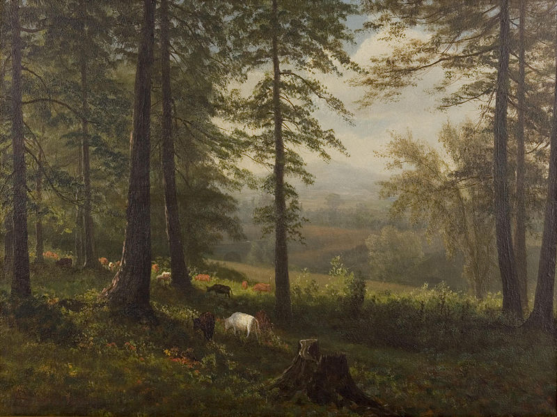 File:Albert Bierstadt - View to a Clearing.jpg