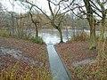 Alder brook inflow into Tudor Grange Park Lake - geograph.org.uk - 629907.jpg