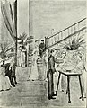 Alligator 1912 (1912) (14578259450).jpg