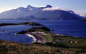 Dillingham Census Area, Alaska - Image: Amalik Bay Archeological District (20357938118)