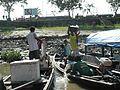Amazon River life.jpg