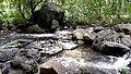 Anakkal Water Falls - panoramio (5).jpg