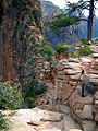 Angels Landing.jpeg