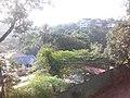 Anniewatta, Kandy, Sri Lanka - panoramio (2).jpg