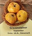 Apfel 060 Gravensteiner (fcm).jpg