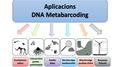 Aplicacions metabarcoding.png
