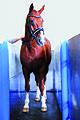 Aquatrainer Sascotec Germany.jpg
