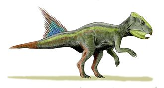Aptian - Archaeoceratops