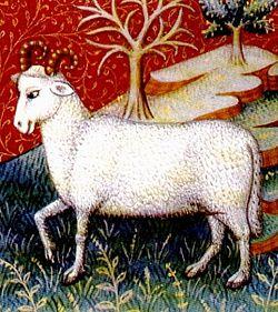 עדכני כבש הבית – ויקיפדיה DN-68