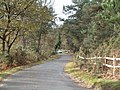Arne Road - geograph.org.uk - 87001.jpg