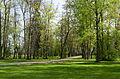 Aruküla mõisa park taga.jpg