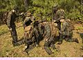 Attack Evolution, 2-8 Marines patrol, ambush and attack 160420-M-TV331-059.jpg