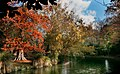 Autumn Hagley Park. (50652045977).jpg