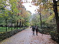 Autumn walk, Madrid's Park Retiro (6382404601).jpg