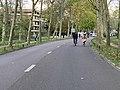 Avenue Fontenay - Paris XII (FR75) - 2020-10-18 - 2.jpg