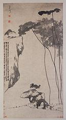 Lotus et canards