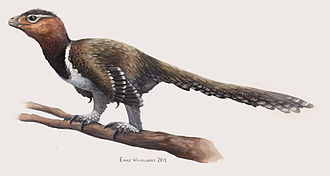 Balaur bondoc - Balaur might have been a herbivorous bird