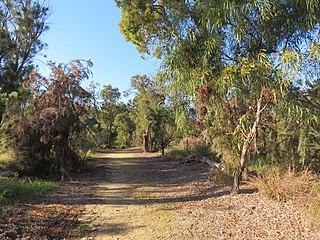 Baldivis Tramway Former tram line in Perth, Western Australia