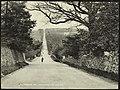 Ballybannon Hill, Castlewellan (13382988675).jpg