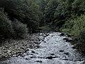Banat,Nera Canyon - panoramio (19).jpg