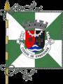 Bandeira Ermesinde.png