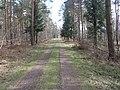 Barnbruch 04.04.2010 - panoramio - Christian-1983 (6).jpg