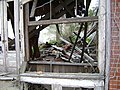 Barney Dilapidated Building with cat inside.JPG
