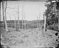Battlefield of Resaca, Ga., 1864 - NARA - 528891.tif