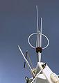 BelliniTosi-antenni.jpg