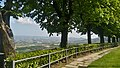 Belvedere di Verduno5.jpg