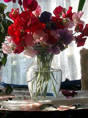 English: Cut flowers in a vase