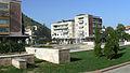 Berkovitza-center2.jpg