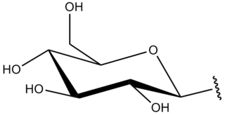 Glycosyl functional group formed by removing the hemiacetal hydroxy group from a monosaccharide, oligosaccharide or derivatives of these compounds