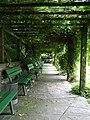 Bielefeld Botanischer Garten 4.jpg