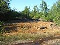 Big Dan plant site.jpg