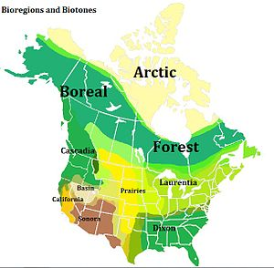 Laurentia (bioregion) - A map of northern North American bioregions, showing Laurentia around the Great Lakes.