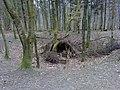 Bivouac, Cowleaze Wood - geograph.org.uk - 1244156.jpg