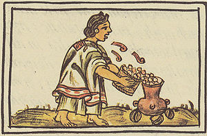 "Aztec cuisine - An Aztec woman blowing on maize before putting in the cooking pot, so that it will not ""fear the fire"". Florentine Codex, late 16th century."