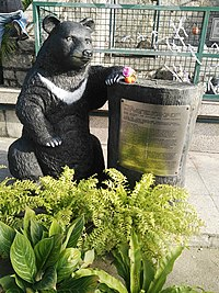 Bobo (黑熊)