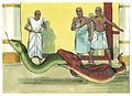 Book of Exodus Chapter 8-2 (Bible Illustrations by Sweet Media).jpg