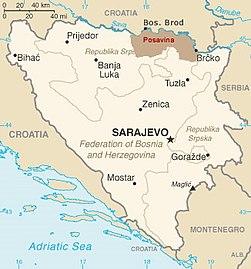 Bosanska Posavina.jpg