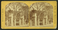 Boston Common, from Robert N. Dennis collection of stereoscopic views 8.png