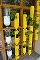 Bottle flower pots.jpg