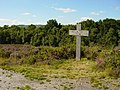 Bovey Heath - geograph.org.uk - 35422.jpg