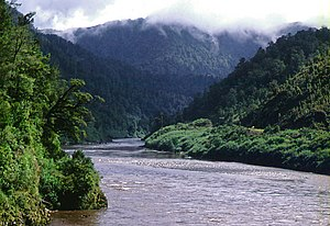 Buller River - Buller River near Berlins