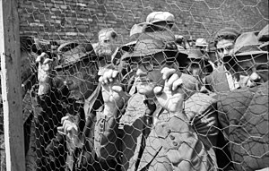The Holocaust in Serbia - Jews in Belgrade in 1941.