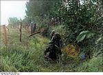 Bundesarchiv Bild 183-S73819, Arnheim, Grenadiere arbeiten sich vor Recolored.jpg