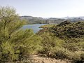 Butcher Jones Trail - Mt. Pinter Loop Trail, Saguaro Lake - panoramio (160).jpg