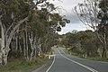 Bywong NSW 2621, Australia - panoramio (6).jpg